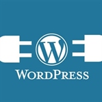 En İyi 20 Wordpress Eklentisi
