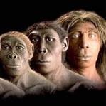 Evrim Nedir? Neden ve Nasıl Oluşur?