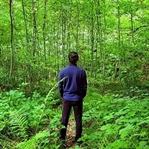 Kuzuyayla Tabiat Parkı Kamp Rehberi