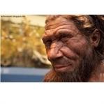 Neandertal İnsan Türü Hakkında Bilgiler