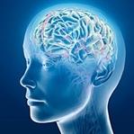 İnternet Kullanımı ve Beynimize Etkileri