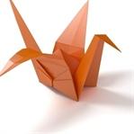 Origami İle Katla , Oluştur , Eğlen