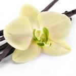 Saç, Cilt ve Sağlık İçin Vanilyanın Faydaları