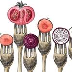 Sağlıklı Beslenme Sürecimde Yer Alan Besinler