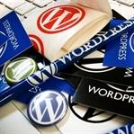 Sahip Olmanız Gereken 6 WordPress Eklentisi