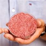 Yemek İçin Hayvan Öldürmek Barbarlık Sayılacak
