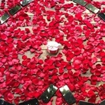 25 iPhone X İle Evlenme Teklif Etti