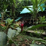 Abenteuer Glamping im Dschungel Costa Ricas