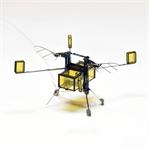 Amerikalı Mühendisler Robot Arı Üretti