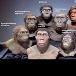 Bir Maymun Meselesi: İnsanın Evrimi