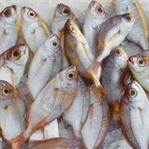 Evdeki Balık Kokusu Nasıl Giderilir ?