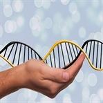 Genetik Mirasınızı Biliyor musunuz?