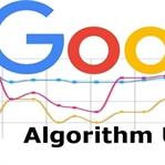 Kasım Ayı Google Güncellemeleri