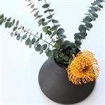 Simply Protea