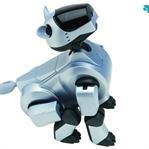 Sony'den Akıllı Robot Aibo İle Tanışın