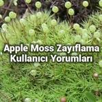 Apple Moss Zayıflama Ve Kullanıcı Yorumları