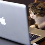 Apple Yazılım Sorunlarıyla Mücadele Ediyor!