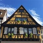 Avrupa'nın en güzel köşesi : Colmar
