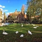 Bir Masalın Peşinde Brugge