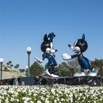 Disneyland Paris ve Legolend Almanya Karşılaştırma