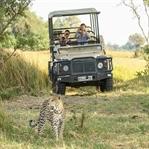 Gezginler için Tanzanya Seyahat Rehberi
