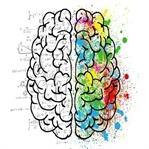 Uyku ve Beyin Sağlığımız