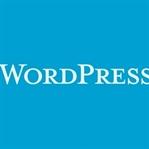 WordPress Site Hızını Artırma Yolları