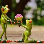 Aşkın Tarifi… Aşk Nedir ?