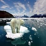 Buz Dağları, Korkutucu Hızlarda Erimeye Başladı