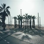 Ein Abstecher nach Tel Aviv!