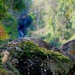 Eine Wanderung im Doi Suthep Nationalpark