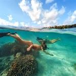 Einzigartige Unterwasserwelten /Wakatobi