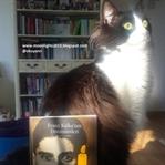 Franz Kafka'nın Dönüşümleri - Claude Thiebaut