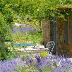 Kreuz und quer durch die Provence