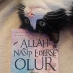 Allah Nasip Ederse Olur - Bekri