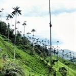Colombia linda! 19 Gründe für eine Reise nach Kolu