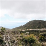 Einer der schönsten Wanderwege Teneriffas