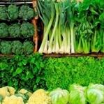 Sağlıklı ve Doğal Kilo Verme için Harika Bitkiler