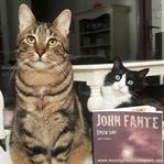 Toza Sor - John Fante