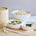Vegetarisch & lecker: Miso Suppe