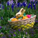 15 tolle Ostergeschenke für Reisende
