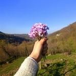 Eflatun Çiçeklerimle Köy Turu 💜