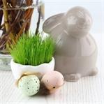 Inspirierende Rezepte und Ideen zu Ostern