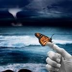 Kelebeğin Kanatlarındaki Aşk
