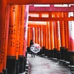 Kyoto Travel Guide - Food, Unterkünfte und mehr
