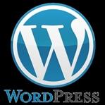 WordPress Nedir? Ne İşe Yarar?