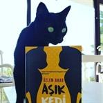 Aşık Kedi - Özlem Anar