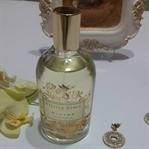 Atelier Rebul Divine Parfüm ile Bahar Gibi Kokun