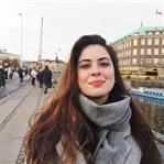 Danimarka Vizesi Nasıl Alınır? – VFS Global