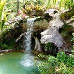Das Paradies in Whitianga